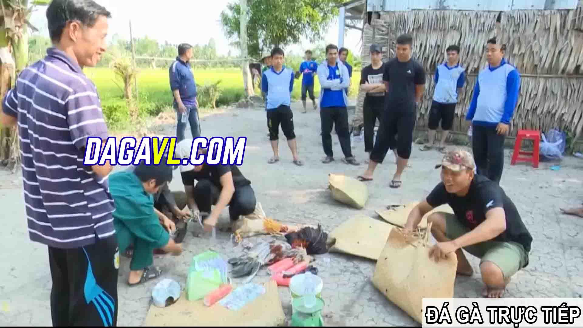 DAGAVL.COM - đá gà trực tiếp. Bắt 27 đối tượng đá gà ăn tiền tại Bà Rinh