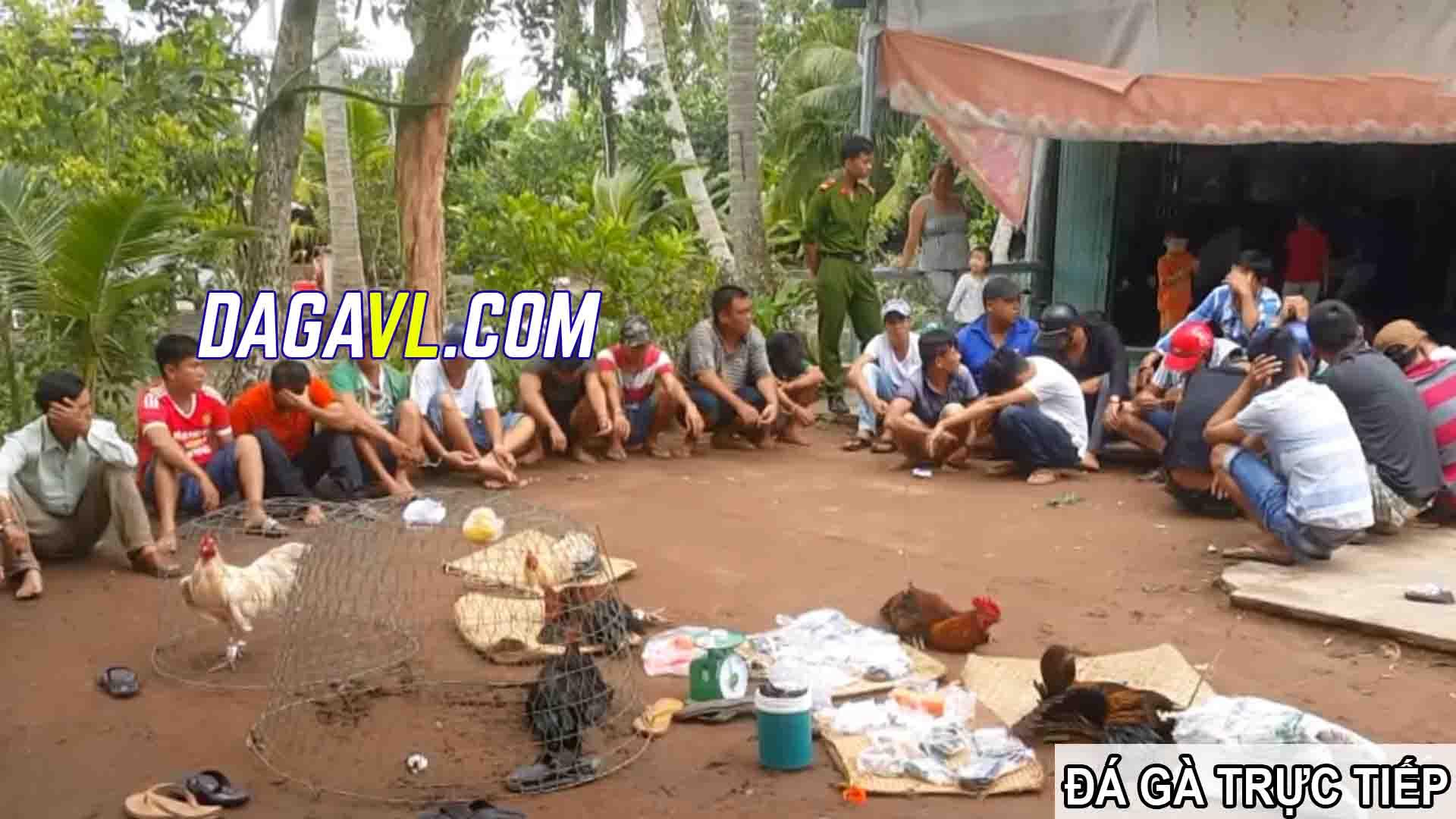 DAGAVL.COM - đá gà trực tiếp. Bắt 27 đối tượng đá gà ăn tiền tại Vị Thanh
