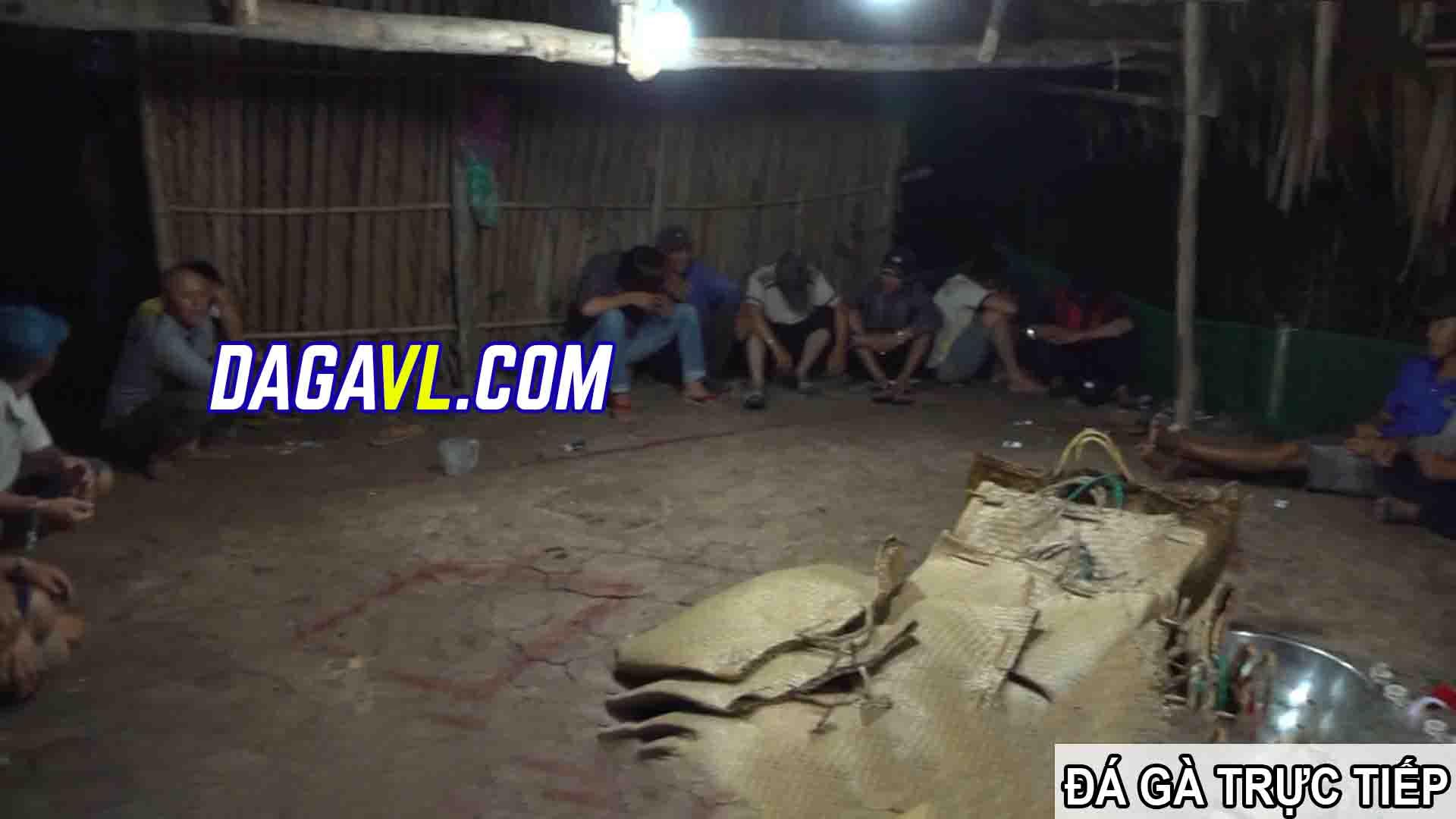 DAGAVL.COM - đá gà trực tiếp. Bắt 31 đối tượng đá gà ăn tiền tại Tân Lập