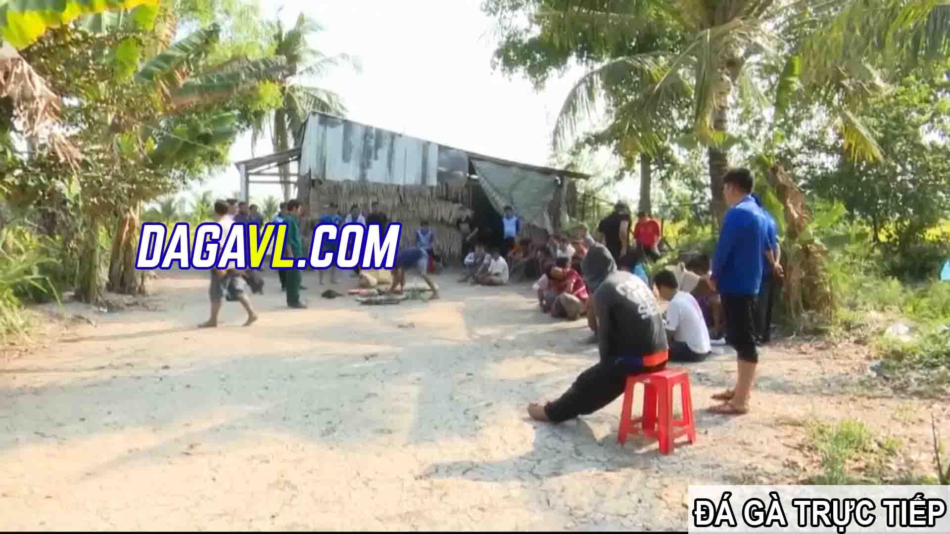 DAGAVL.COM - đá gà trực tiếp. Hiện trường bắt 27 đối tượng đá gà ăn tiền tại Bà Rinh