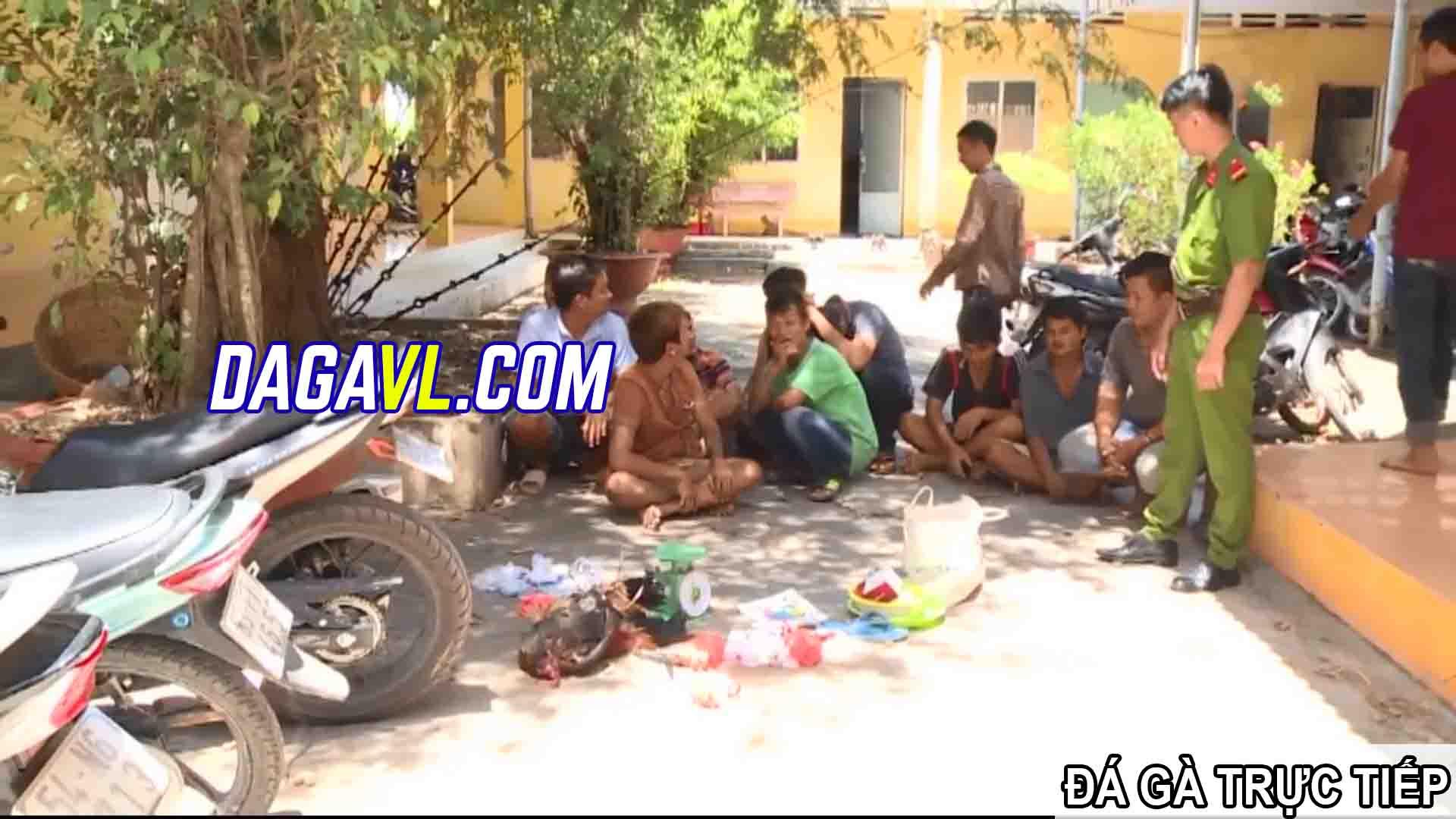 DAGAVL.COM - đá gà trực tiếp. Bắt 10 đối tượng đá gà ăn tiền tại Thạnh Phú