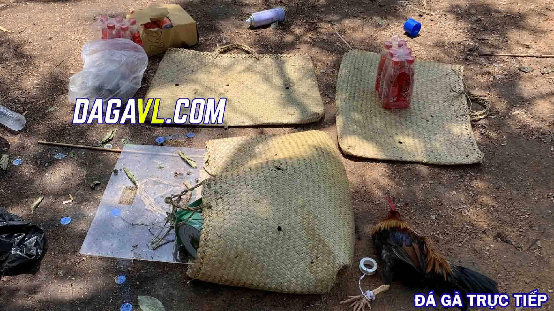DAGAVL.COM - Bắt 15 đối tượng đá gà ăn tiền tại Gò Công Đông